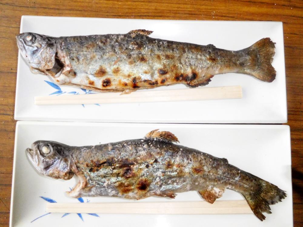 猪之頭養鱒場|グルメ | chafuka